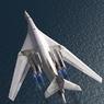 Ту-160 станет невидимкой (ВИДЕО)