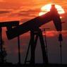 Цене на нефть надоело падать и она подросла