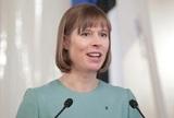 Песков сообщил о подготовке встречи президентов России и Эстонии
