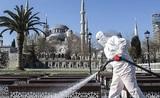 В Турции число заразившихся коронавирусом увеличилось до 78 546 человек