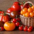 В экстракте томатов обнаружена панацея от тяжелого онкозаболевания