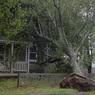Появились первые фото и видео последствий урагана «Дориан» в Канаде