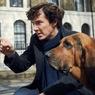 Самый модный Шерлок Холмс стал на вечер солистом Pink Floyd ВИДЕО
