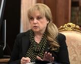 СК попросил отправить на принудительное лечение напавшего на Эллу Памфилову