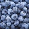 Любимая многими ягода оказалась лекарством против высокого сахара