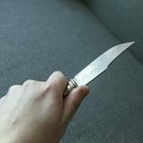Под Петербургом девятилетний мальчик закрыл собой мать от ножа