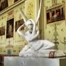 Минкульт  высказался о выставке с чучелами животных в Эрмитаже в Петербурге