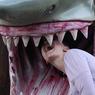 Цена эволюции: ум долог, да зуб короток (ФОТО)