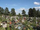 Под Воронежом неизвестные раскопали могилу женщины