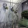 Анализ крови Скрипалей проведёт Организация по запрещению химического оружия