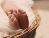 Найденные в московской квартире дети могут быть рождены суррогатными матерями