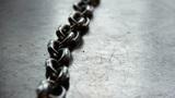 Полиция задержала родителей, которые привязывали цепями 13 своих детей