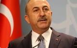 В МИД Турции заявили: российские ВКС не наносили ударов по турецким солдатам