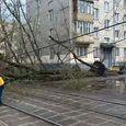 Губернатор Московской области уточнил число пострадавших от урагана