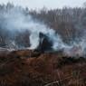 Гринпис составил карту пожаров – задохнется вся европейская часть России