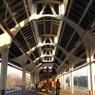 В Москве станция «Тимирязевская» задымилась из-за пробоя кабеля