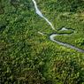 Участники ОНФ предложили закон о спутниковом мониторинге лесов