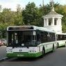 ДТП с автобусом в Приморье унесло две жизни