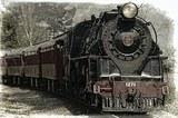 В Подмосковье поезд  сбил насмерть пожилую пару