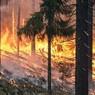 В Калифорнии из-за пожаров объявлен режим ЧС