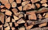 Иванов рассказал о шутке Путина про дрова для Германии