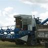 Дмитрий Медведев похвалился рекордным урожаем зерна