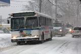 В Приамурье введен режим ЧС из-за снегопада