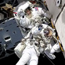 Среди арабских шейхов идет конкурс на право полететь в космос