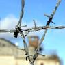 Рабы ГУЛАГа: правозащитники побывали в колонии Толоконниковой