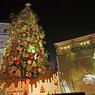 Новый Год к нам идет: в столице открываются елочные базары