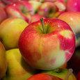 Три продукта способны сохранить здоровье человека