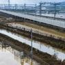 Заводы Panasonic и Hitachi пострадали из-за тайфуна в Японии
