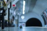 Снимок с дракой в метро двух мышей за крошки еды стал фотографией года