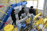 России и Украине предложили забыть разногласия и заключить договор по газу на 10 лет