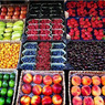 Сегодня правительство опубликует список запрещенных продуктов