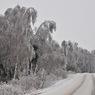 Школьник шел 2 км пешком по морозу в школу из-за отсутствия сдачи у водителя