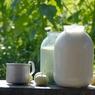 Граждане России в целях экономии отказываются от молочных продуктов