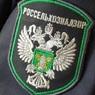 Россельхознадзор пригрозил ограничить ввоз белорусского молока и мяса
