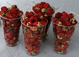 Роспотребнадзор снова призвал не покупать овощи и фрукты у бабушек у дороги