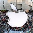Стала известна дата выхода нового бюджетного iPhone