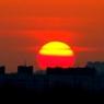 Экологи Москвы объявили красный уровень тревоги