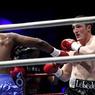 Денис Лебедев выйдет на ринг в марте