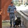 В Москве за взятку задержаны глава кинологической службы и его заместитель