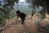 Компанию любителю бега на лесной тропе более 6 минут составляла дикая пума