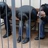 СКР не дает СПЧ разрешение на посещение обвиняемых в убийстве Немцова