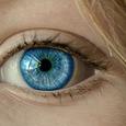 Учёные обучили нейросеть определять болезни сердца по сетчатке глаза