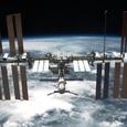 Бактерии не превращаются в космосе в «монстров»