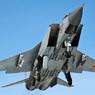 МиГ-31 потерпел крушение в Бурятии