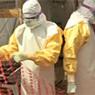 ВОЗ бьет тревогу: вирус Эбола может прийти из Африки