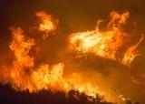 Президент Бразилии отказался от предложенной Макроном помощи в тушении пожаров